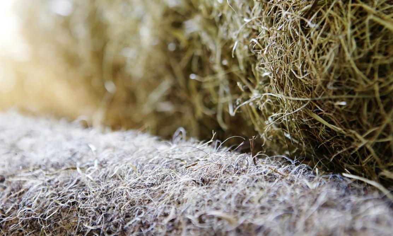 Futon Material Seegras